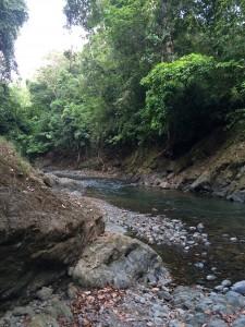 River of Dreamers - My favorit meditation spot