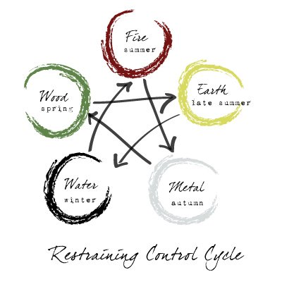 5 Element Theory - Control Cycle